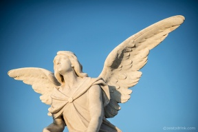 Angel from Cementerio Santa Maria Magdalena De Pazzis.