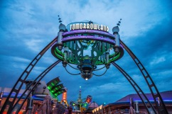 Tomorrowland beckons...