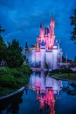 Cinderella's castle reflection.